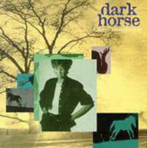 cover of Cheryl Hoenemeyer: Dark Horse
