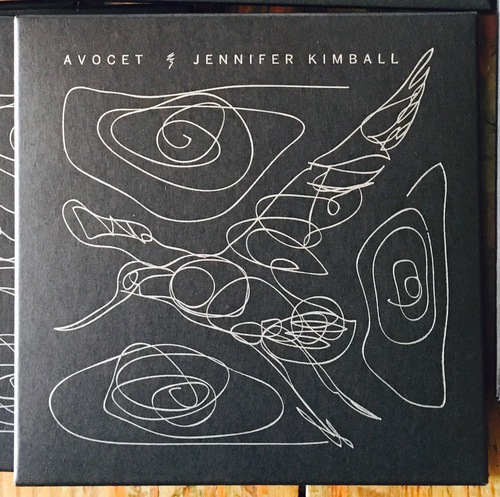 cover of Avocet
